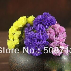"Free shippin!!! 100pcs/lot Mixed Color ""forget-me-not""Flower Stuffing/ filler For Glass Cover Vials Pendant"