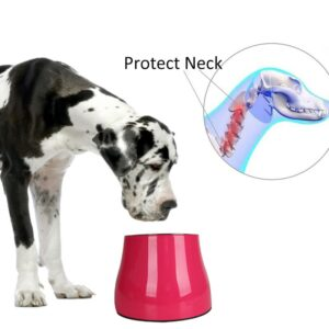 Protect Pet's Neck Pet Bowl Sets Feeding Food For Golden Retriever Large Dogs With Malemine Stand Removable Stainless Steel