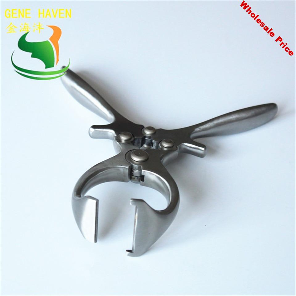 Pig Stainless Steel Emasculator Veterinary Castration Surgical Instruments for Dairy Farm