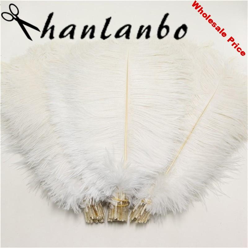 d02c2cfb-d02c2cfb-50-pcs-lot-natural-white-ostrich-feather-25-30-cm-10-to12-inches-plumages-ostrich-feather..jpg