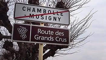 孕育勃根地的頂級之路- Route des Grands Crus照片集