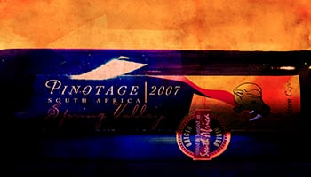 【葡萄品種】皮諾塔吉(Pinotage): 南非的國寶酒?