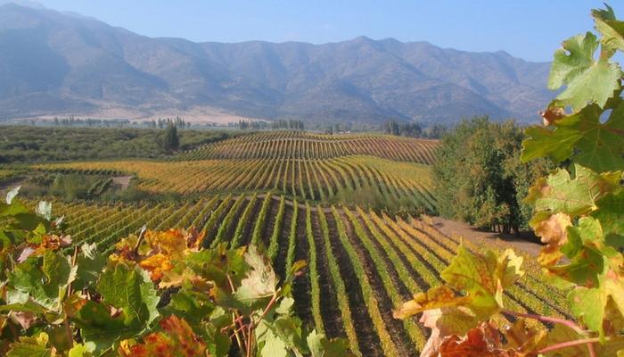 光耀國際的智利與阿根廷葡萄酒