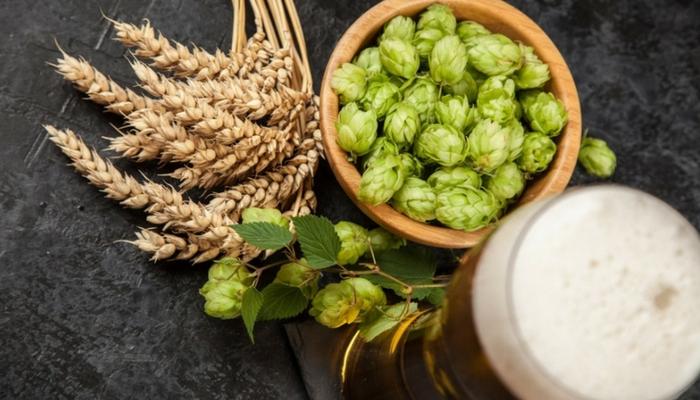 【啤酒入門】影響啤酒風味的四大原料