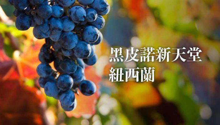 【產區介紹】新手葡萄酒產區簡介-紐西蘭 ( New Zealand )