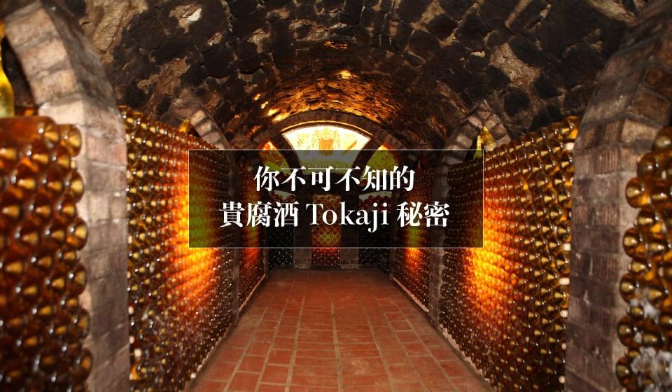 【葡萄酒款】酒中之王貴腐酒 Tokaji 究竟怎麼來?