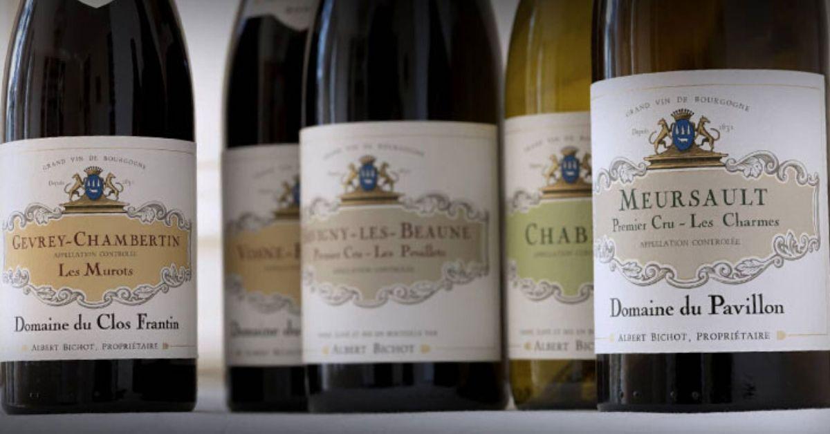 【布根地名莊巡禮】近兩百年的貴族釀酒世家 - 亞伯彼修 Albert Bichot