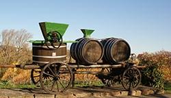 【新手必看】一分鐘認識橡木桶:增添葡萄酒香氣的幕後功臣