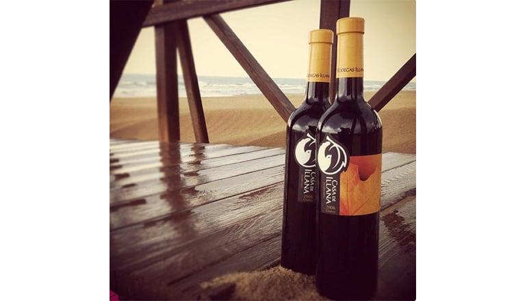 西班牙葡萄酒的新浪潮-LaMancha