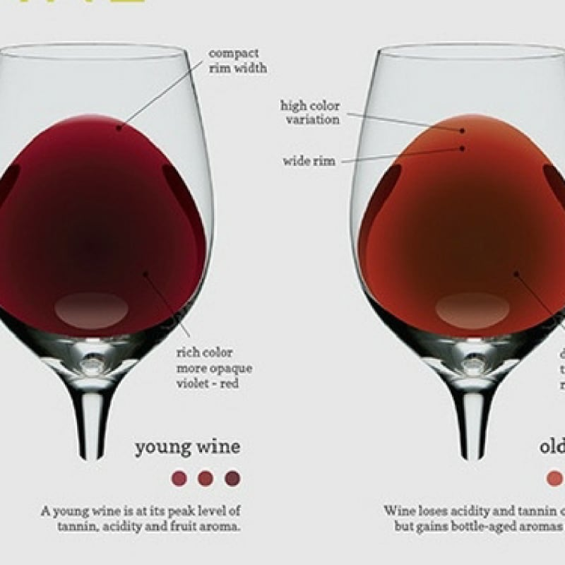 Tutorial wine color meaning index
