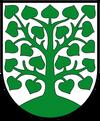 Wappen der Stadt Homberg (Ohm)