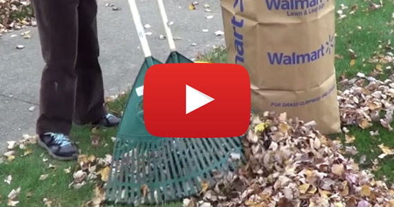 This Is The FASTEST Way To Pick Up Leaves
