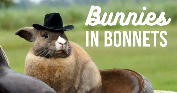 Bunnies In Bonnets