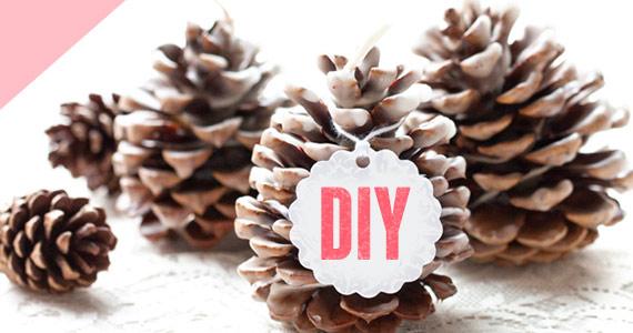 diy-pine-cone-fire-starters-570x300