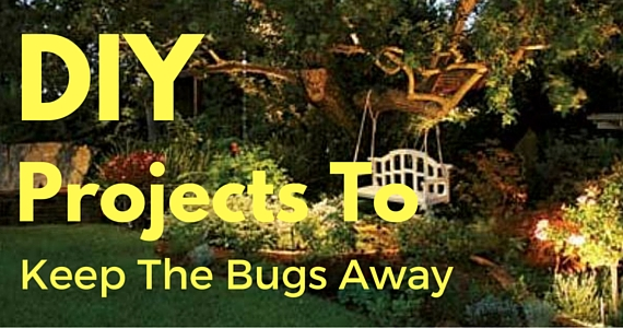 DIY Backyard Projects To Keep The Bugs At Bay