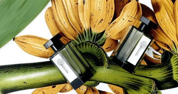 Free Sample of L'Artisan Bana Banana Perfume