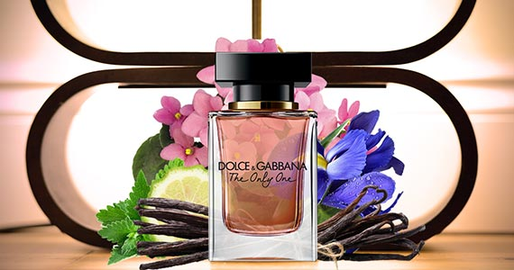 Free Sample of Dolce & Gabbana Perfume
