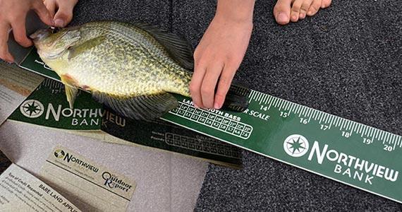 Free Fish Ruler