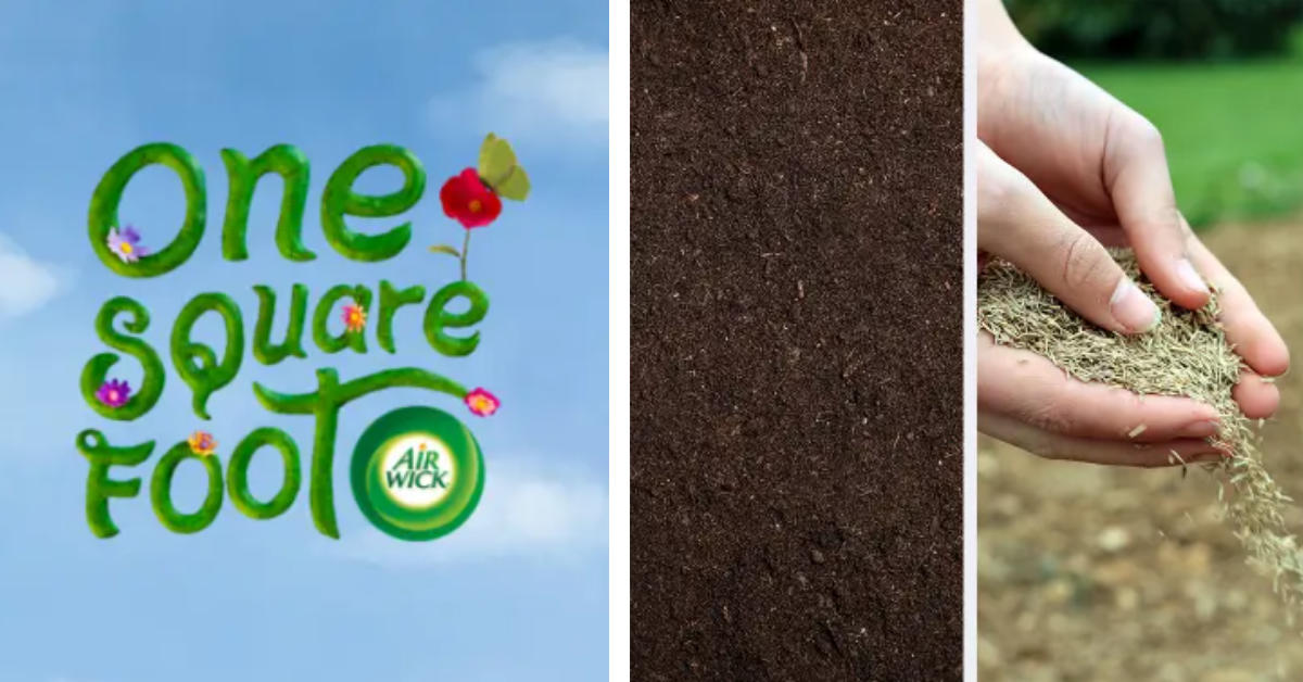 FREE Seeds for your Garden from Airwick
