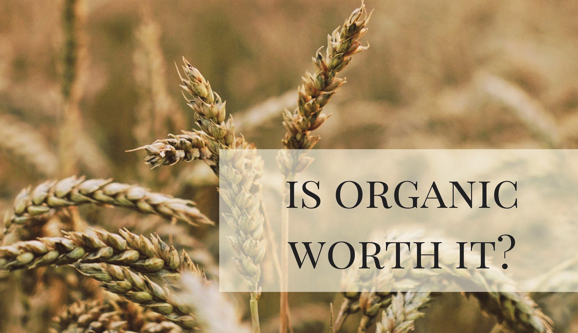 Is organic worth it
