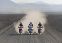 Adventure Awaits On Africa Twins From £28 Per Month With New Finance Packages