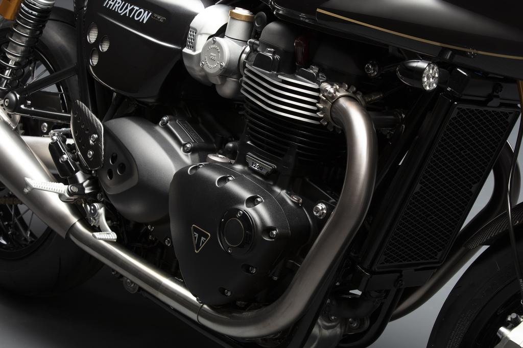 All New Triumph Factory Custom Offer 03