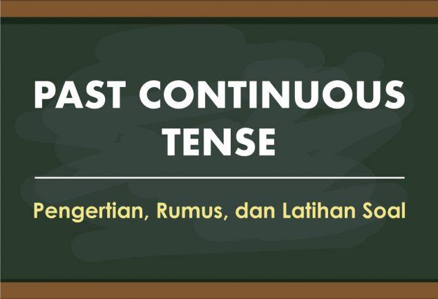 Past Continuous Tense 6