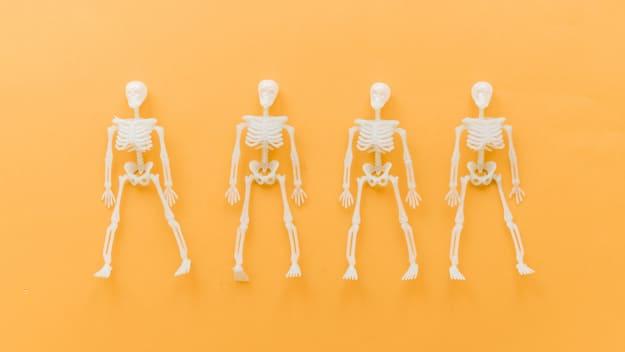 Tentang Seluk-Beluk Sistem Gerak Pada Tubuh Manusia