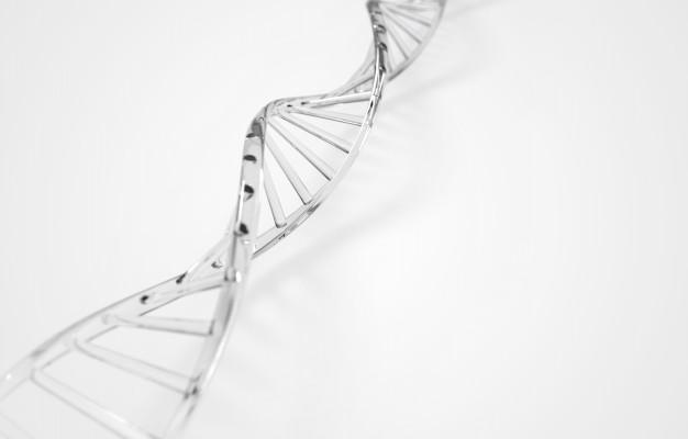 Pengertian Evolusi, Teori Evolusi, Prinsip & Prosesnya 3