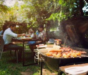barbecue (bbq) entre amis