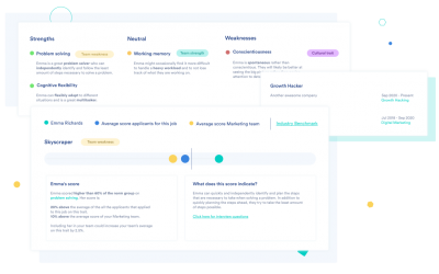 overview of an Equalture candidate profile, highlighting strengths, weaknesses, industry and team benchmark and past experience