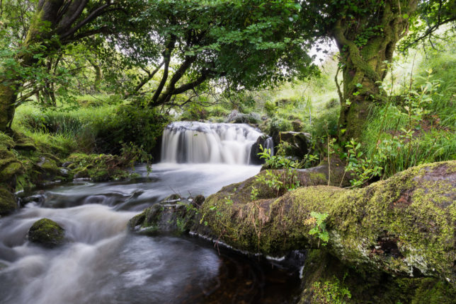 Waterfall, County Kerry, Ireland