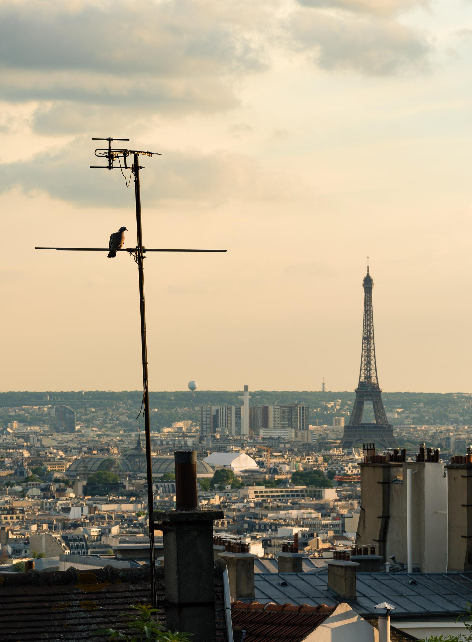 Golden Hour, Paris, France