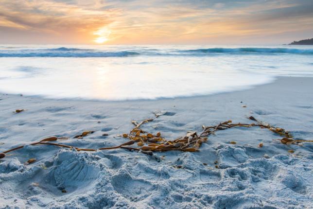 Sunset, Carmel-by-the-Sea, California