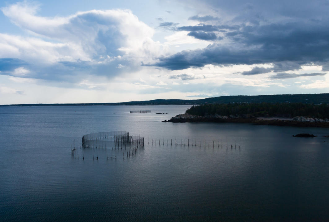 Fishing Weir, Grand Manan Island, Canada