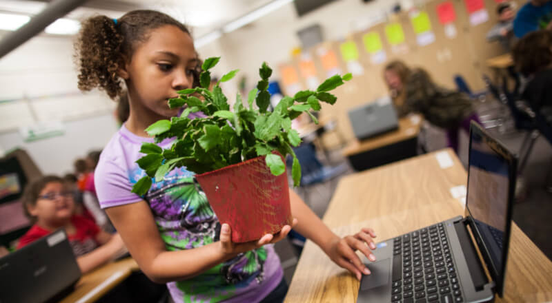 girl student standing up working on her laptop while holding a plant