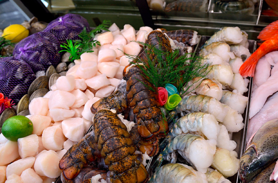 oysters, lobsters and seafood at Festival Foods