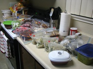 Freezer meals ready to store