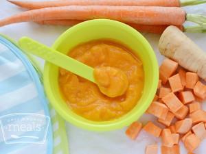 Baby Food Root Veggie Trio