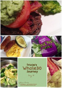 Tricia's Whole30 Journey - Day 15