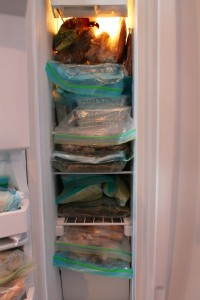 oamm member Elizabeth's apartment freezer
