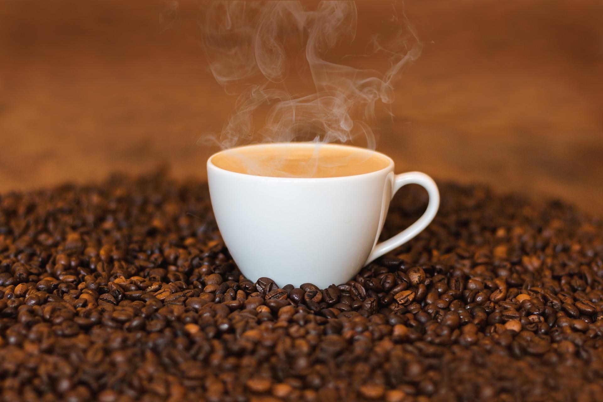 Fundo de previdência canadense investe no café brasileiro