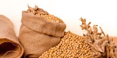 Associação reduz expectativas para safra e exportação de soja em 2019