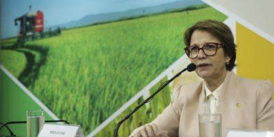 Tereza Cristina irá a países árabes para melhorar relações comerciais