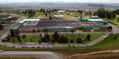 Klabin assina contrato para a exploração da atividade florestal no Paraná
