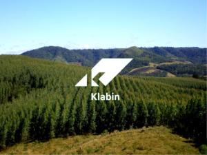 Klabin (KLBN11): parecer do Cade autoriza aquisição de negócios de papéis da IP