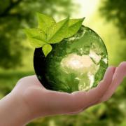 Confira cinco ações de empresas que apoiam a sustentabilidade