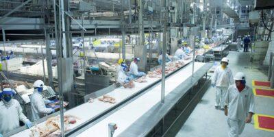 China: frango importado de Santa Catarina testa positivo para Covid-19