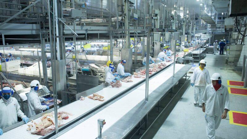 Coronavírus: China diz que frango brasileiro veio com Covid-19