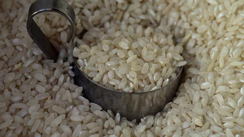 Camex reduz a zero tarifa para a importação de arroz
